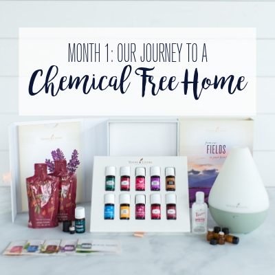 Our Journey To A Chemical Free Home (Month 1)