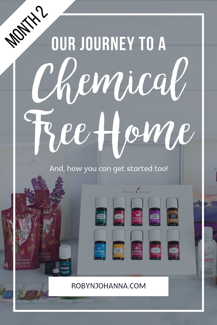 chemical free home journey
